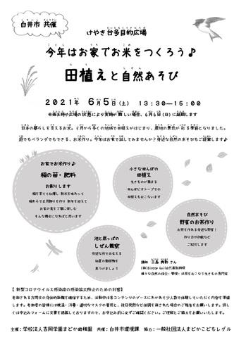田植えと自然あそび_けやき台多目的広場1.jpg